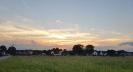 Abendsonne_1