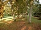 Friedhof vom ehem. Haustenbeck