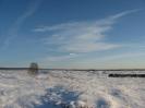 Stapel im Winterleid Blickrichtung Osten