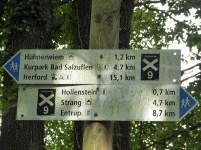 Bad Salzuflen Bismarckturm 2017 17 20170806 1156510994