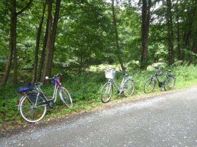 Fahrradtour  6 20170905 1312372024