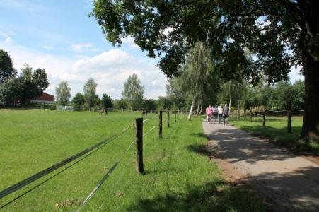 Rund Um Augustdorf 22 20150816 1598051516