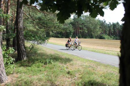 Rund Um Augustdorf 34 20150816 1650293359
