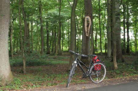 Rund Um Augustdorf 47 20150816 1839194056