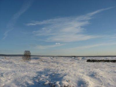 Stapel Im Winterleid Blickrichtung Osten 20120327 1218927739